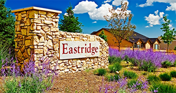 Eastridge, Longview &The Vistas Neighborhoods