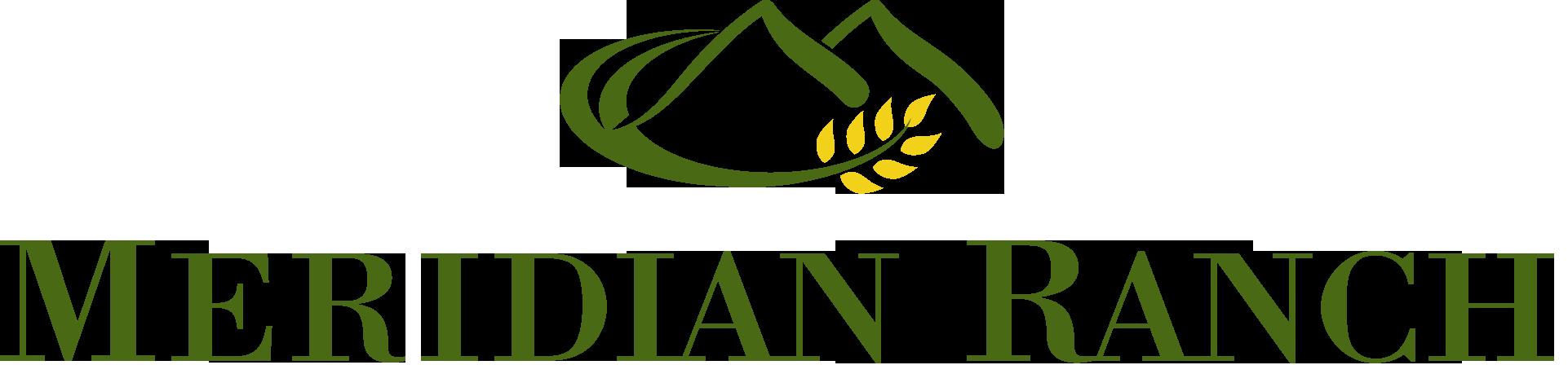 Meridian Logo Header