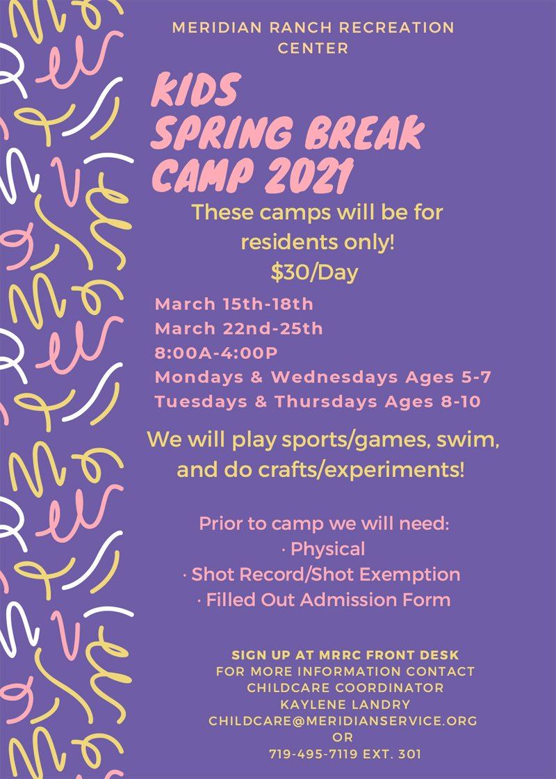 Purple Brush Strokes Summer Camp Flyer